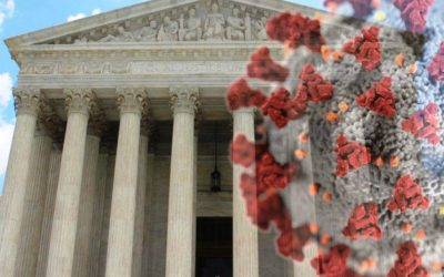 The Status of COVID-19 Lawsuits in the Federal Court System